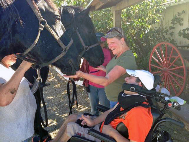 Jamie with Percherons